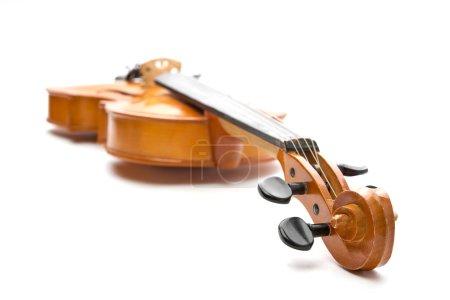 Classic brown violin