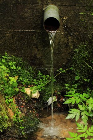Spring of water in the deep czech forest...