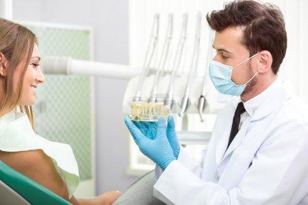 Photo pour Dentiste avec le modèle de dents. Clinique de santé dentaire. - image libre de droit