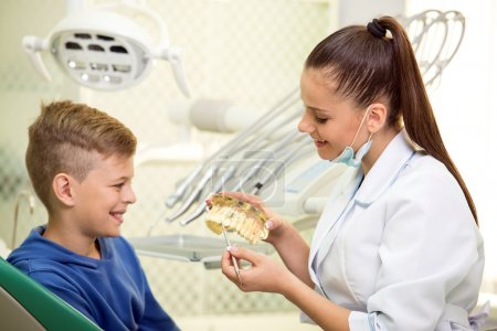 Photo for Dentist woman with the teeth model. Dental health care clinic. - Royalty Free Image
