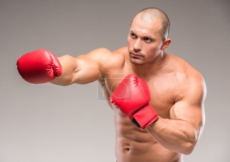 Photo for Handsome muscular boxer on dark background in studio. - Royalty Free Image