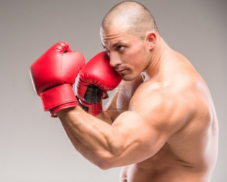 Photo for Studio shot of a boxer wearing red gloves, gray background. - Royalty Free Image