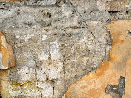 Texture of the old walls of coquina