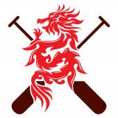 Dragon rowing the paddle graphic design