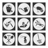 Icons on the theme of organic farming Symbols stages of cultivation of plants