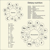 Essential vitamins and elements