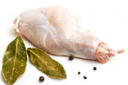 Some pieces of raw rabbit meat with vegetables and spices