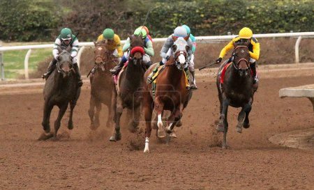 California Chrome Wins The San Pasqual Stakes