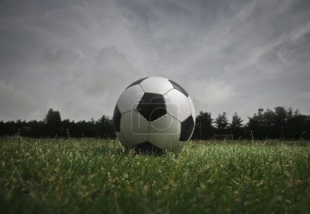 Soccer ball in a field