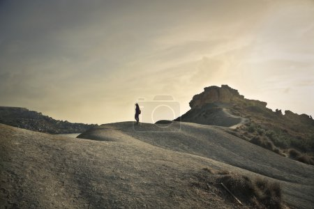 Photo for Alone in a lonely land - Royalty Free Image