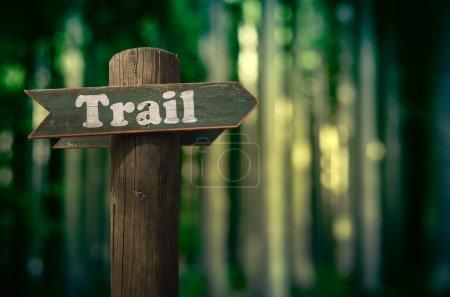 Foto de Wooden Trail Sign In A Forest For Hikers - Imagen libre de derechos