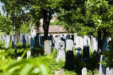 Jewish Cemetery, Miroslav