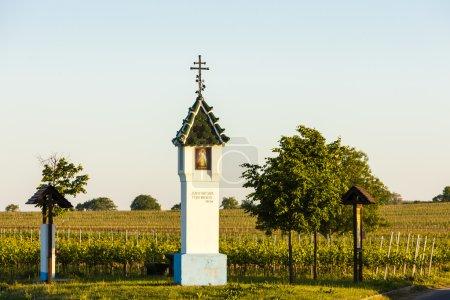Boga '' s tortur z winnicy w pobliżu Velke Bilovice, Republika Czeska