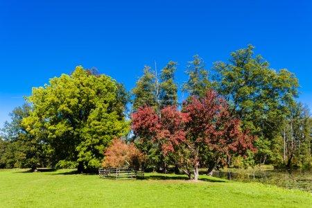 Photo for Park of palace Blatna, Czech Republic - Royalty Free Image