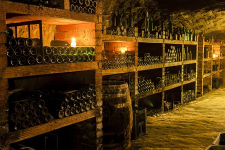 wine archive in wine cellar, Czech Republic