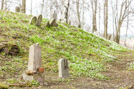 Jewish cemetery, Batelov