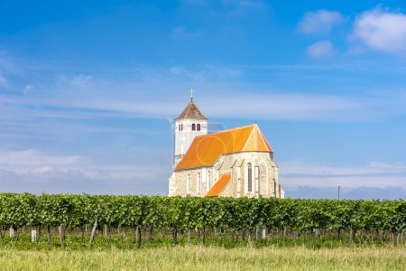 church with vineyard, Kirchenberg, Lower Austria
