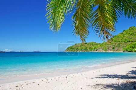 Sandy beach at summer sunny day.