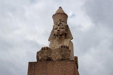 Sphinx in petersburg