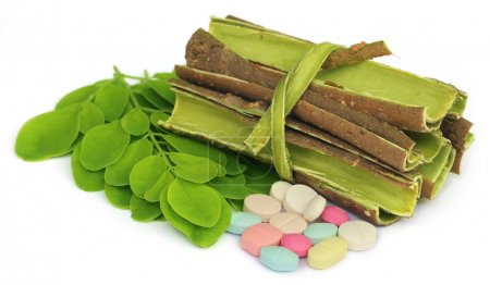 Moringa leaves and bark with pills