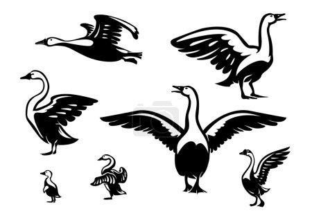 Set of ducks.