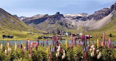 Lake of Tignes and flowers in France