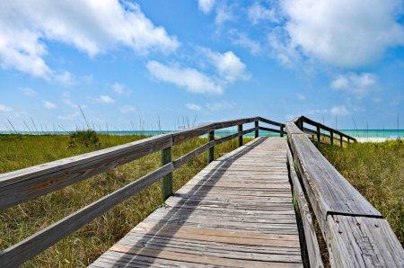 Beach Wooden Boardwalk