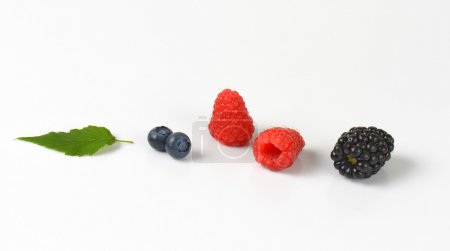 Photo for Fresh blueberries, raspberries and blackberry on white background - Royalty Free Image