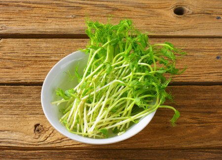 Photo for Bowl of green pea sprouts - Royalty Free Image