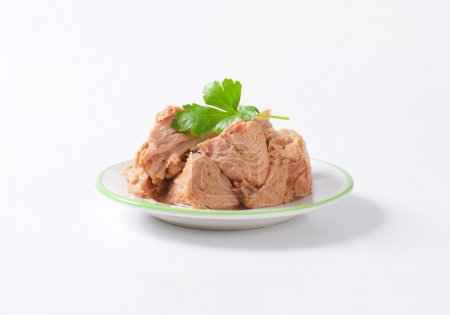 Photo for Chunks of canned tuna on white plate - Royalty Free Image