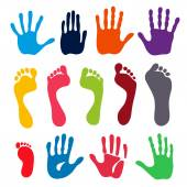 Vector illustration colored generation hand and foot prints isolated on white background Created in Adobe Illustrator EPS 8