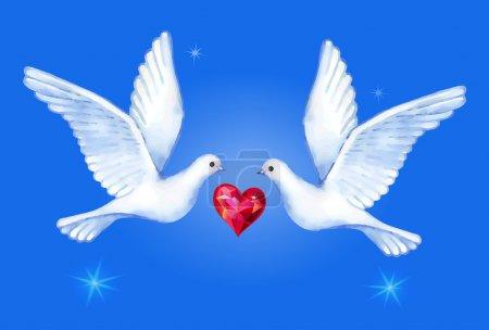 Watercolor soaring pigeons pair, vector illustration