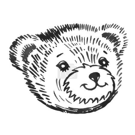 Bear's smiling snout pattern