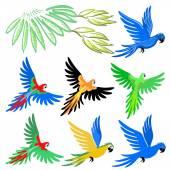 Macaw parrot pattern set