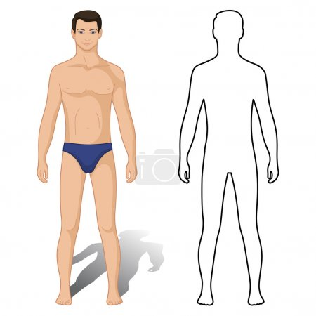 Fashion man colored & outlined template figure