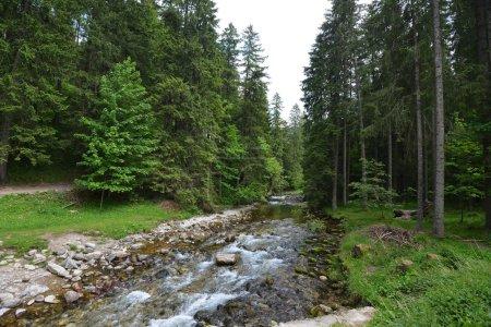 Photo pour Jet d'eau sur les pentes des montagnes avec des pierres - image libre de droit