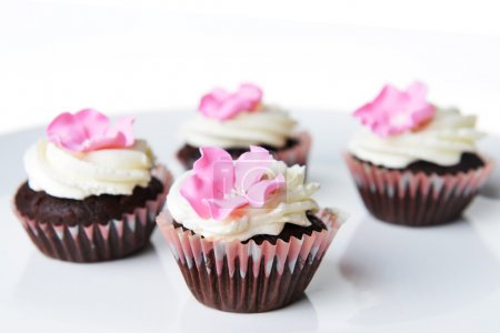 Photo for Small cupcakes with sweet cream on white background - Royalty Free Image