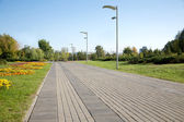 City park with walking path, tiled on summer day
