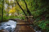 Croatia. Plitvice Lakes. Wooden footbridge with handrails over the stream to the waterfall