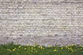 """Постер, картина, фотообои """"Весна одуванчики"""""""