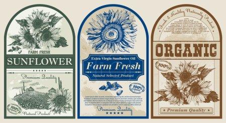 Vector design of  vintage labels for sunflower oil