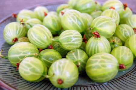 Background with Fresh gooseberries