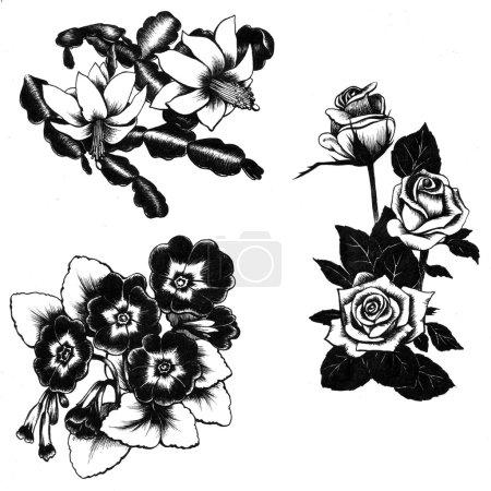 Foto de Conjunto de lirio de flores dibujado mano, alcatraces, lirios, narcisos - Imagen libre de derechos