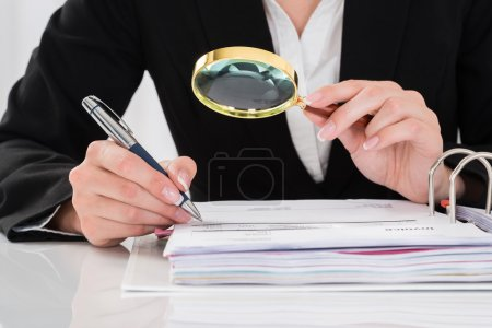 Auditor Inspecting Financial Documents