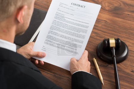 Judge Reading Contract Paper