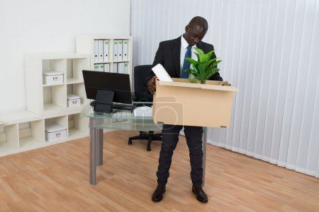 Photo for Portrait Of Young African Businessman Holding Plant In Cardboard Box In Office - Royalty Free Image