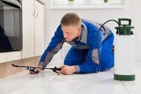 Male Worker Spraying Pesticide On Cabinet