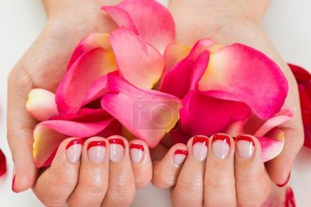 Photo pour Gros plan des mains féminines avec vernis à ongles manucure tenant des pétales de Rose - image libre de droit