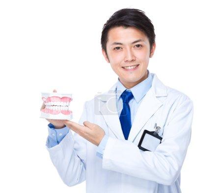 Dental doctor with denture