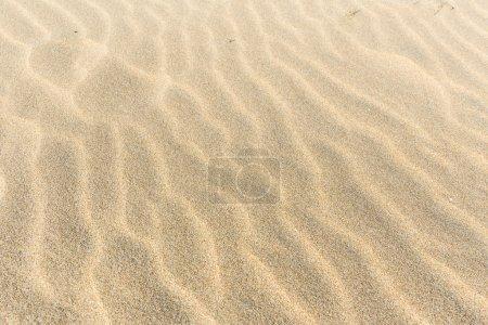 Golden wavy sand
